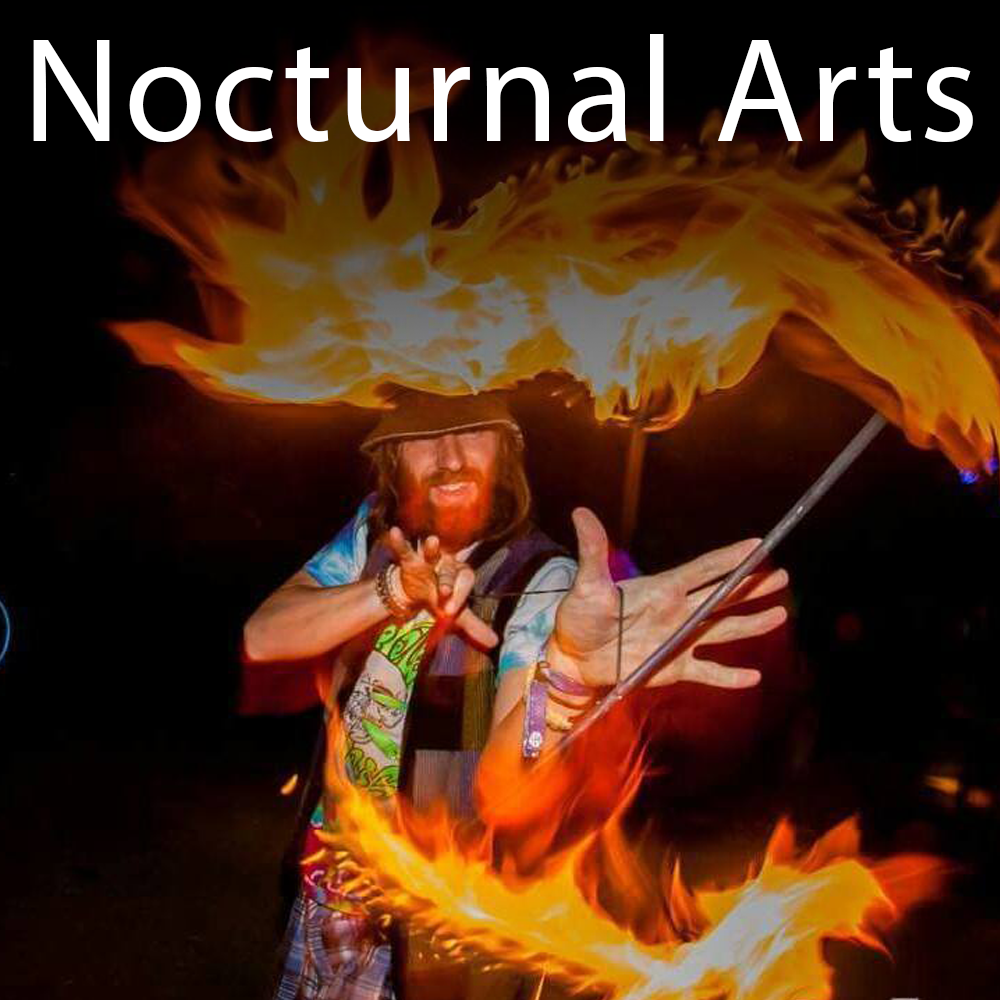 Nocturnal Arts Square